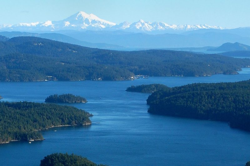 Reasons why San Juan Island is a must-visit vacation destination featured image
